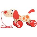 Walk-A-Long Puppy